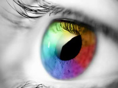 Multicolour eye